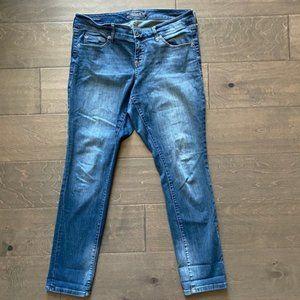 Torrid Premium Boyfriend Jeans Size 10 Reg
